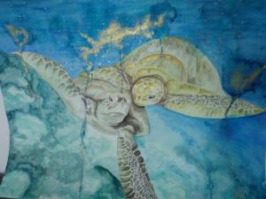 Schildkröten Paar