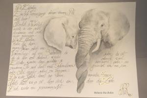 Liebende Elefanten mit Text