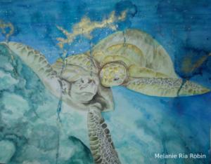 DieSchildkröten